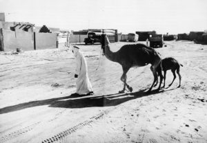 Insediemanto di sha'abi ad Abu Dhabi, anni '70
