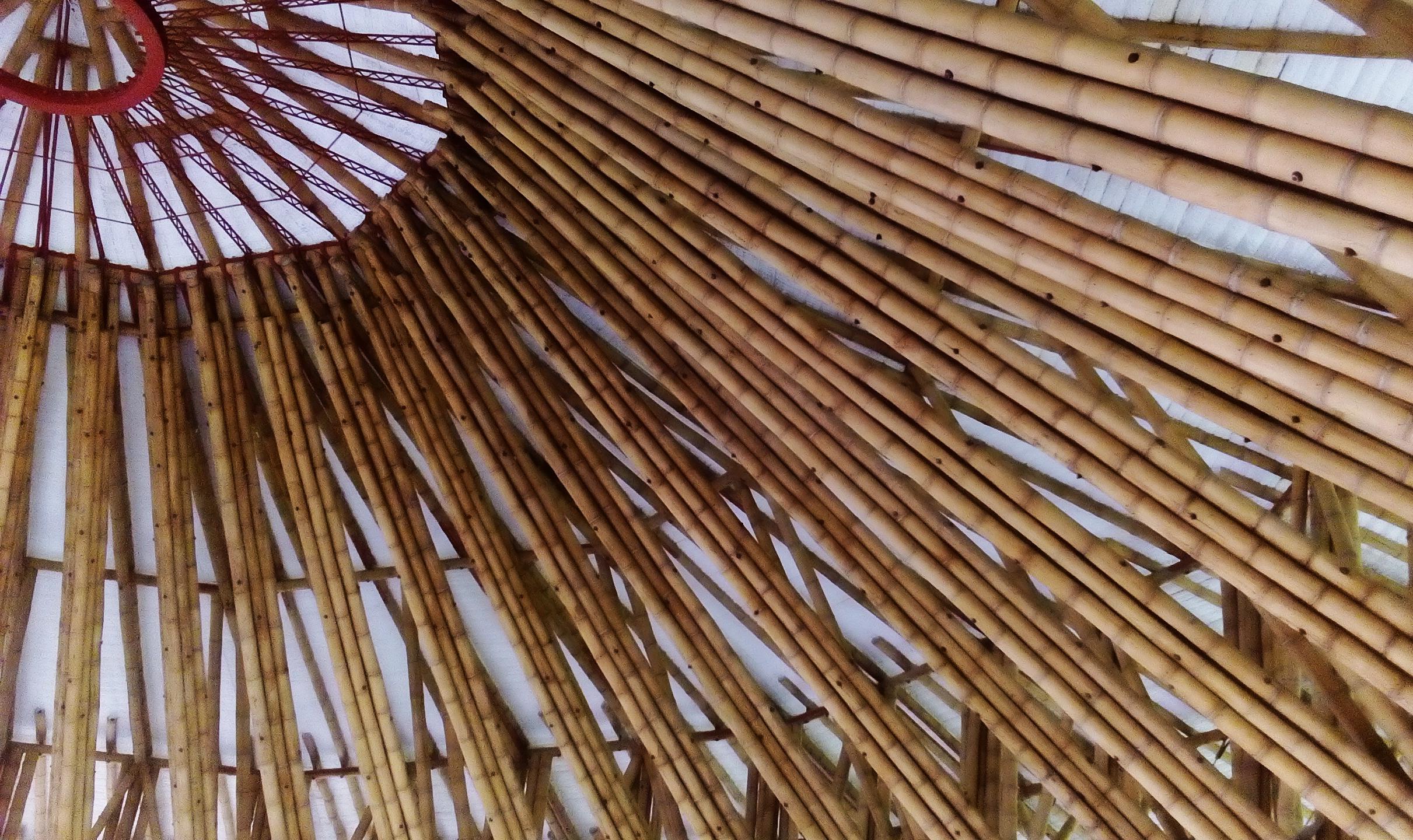 Risultati immagini per manizales colombia