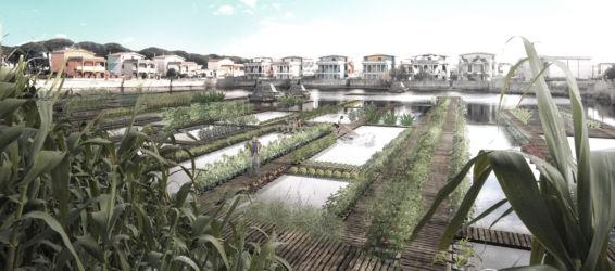 trasformazione in giardini galleggianti (Michele Iorio, Marika Maione e Joseph Alan Valia)
