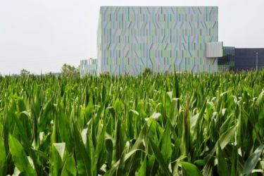 Nuovo magazzino automatico Pedrali, il rapporto con le coltivazioni (© Filippo Romano)