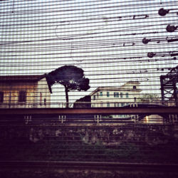 © Antonia Marmo